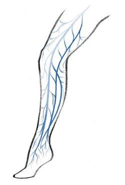 gesunde beine